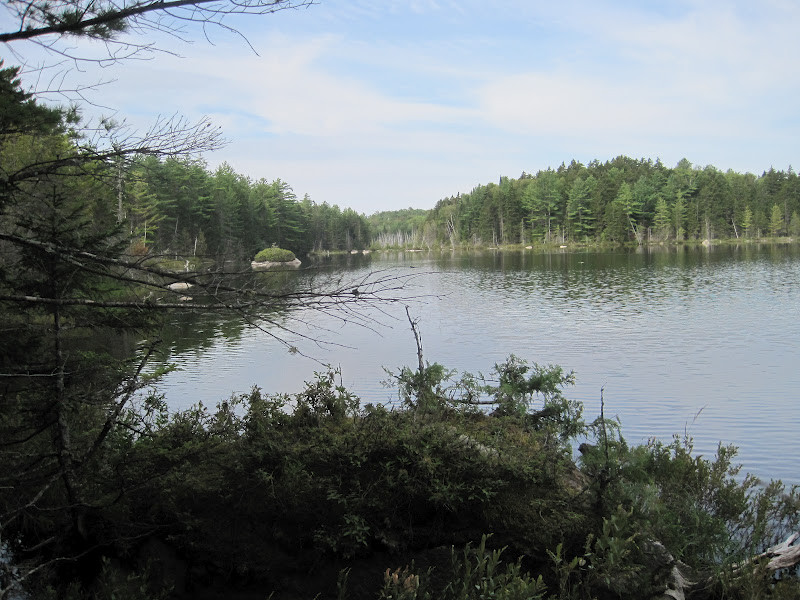 Looking West from the Trail down to Clifford Pond (Credit: Bill Geller)