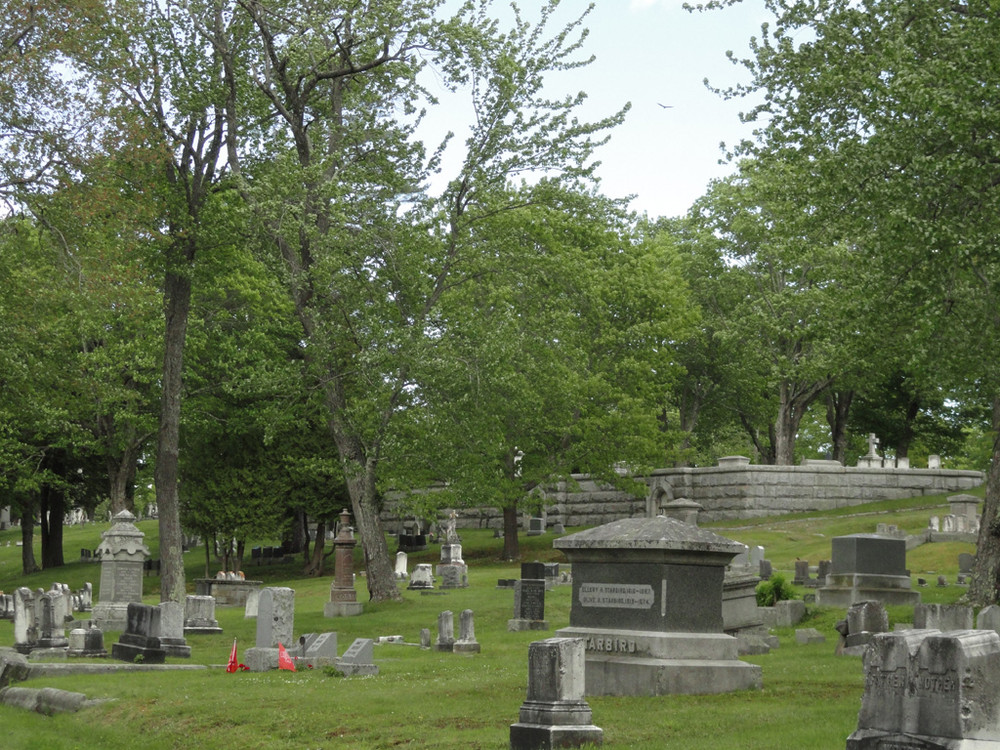 Evergreen Cemerety (Credit: Center for Community GIS)