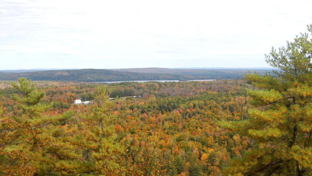 Fall Foliage View (Credit: Alison DeGraff)