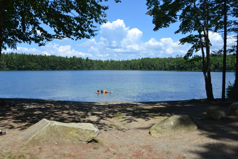Sandy beach (Credit: Maine Trail Finder)
