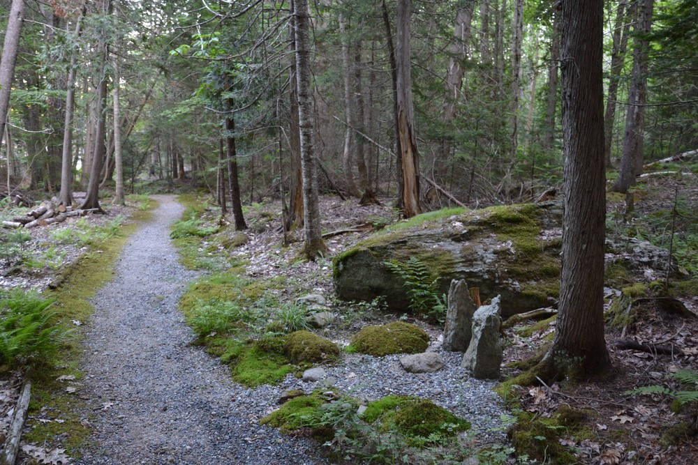 Gravel path leads down the hill toward the Zendo (Credit: Morgan Bay Zendo)