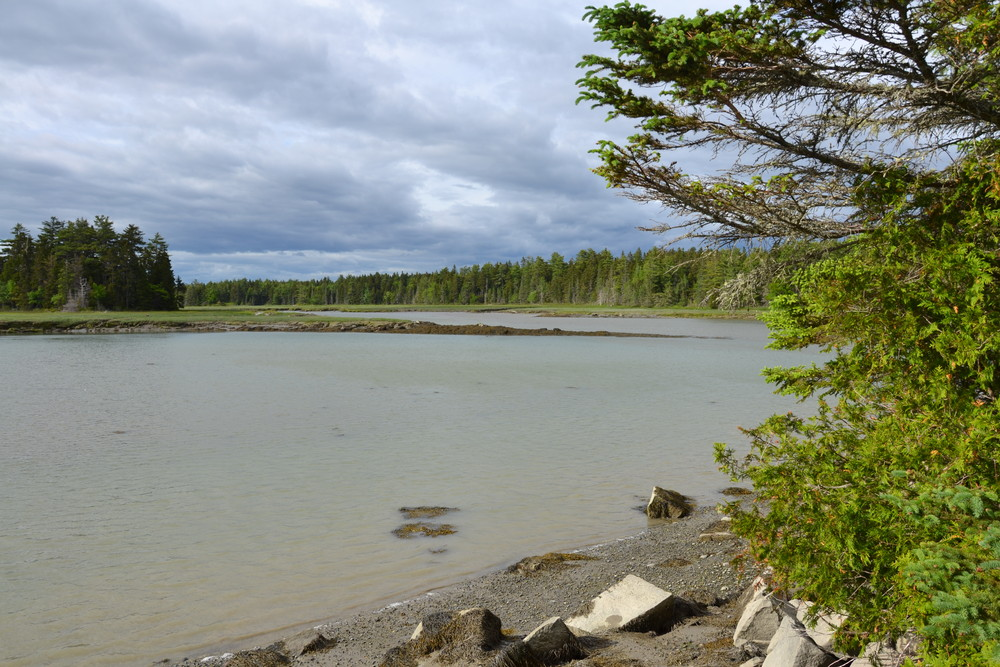 Looking up toward the Carrying Place Inlet (Credit: Nicole Grohoski)