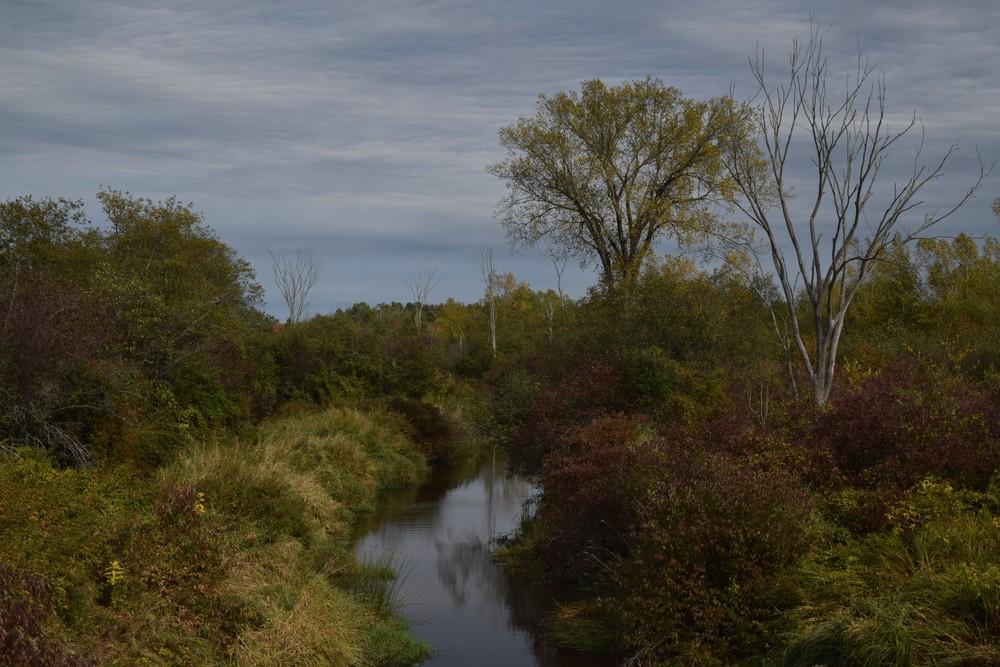 (Credit: Royal River Conservation Trust)