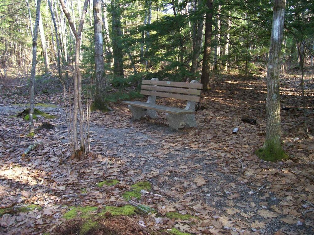 Bench along the Loop (Credit: Saco Bay Trails)