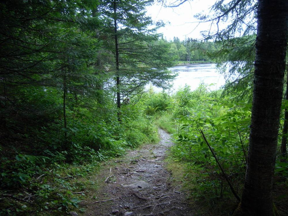 Fish River Falls Trail (Credit: Aroostook Outdoors)