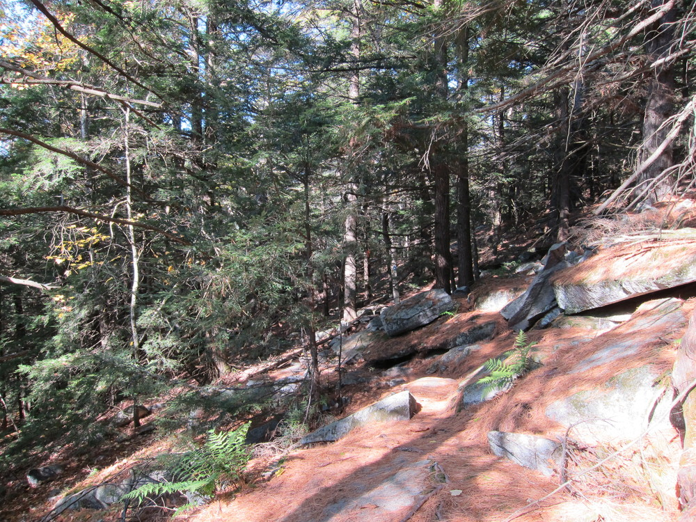 Ledges coming down French Mountain Trail (Credit: M. Morris)