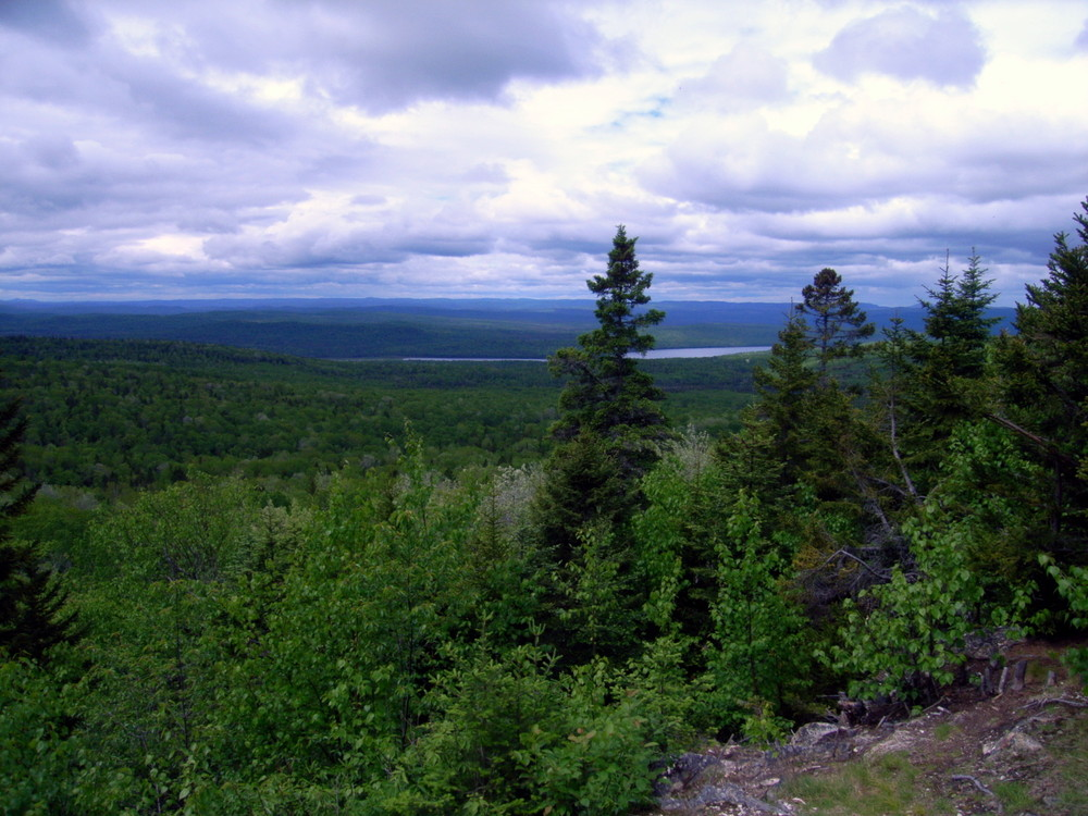 View facing west from the summit (Credit: Aroostook Outdoors)