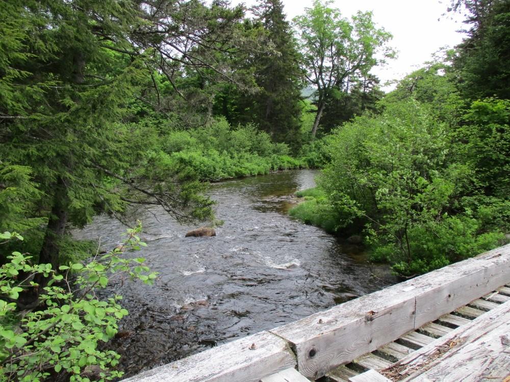 Bridge over Katahdin Brook (Credit: Evan Watson)