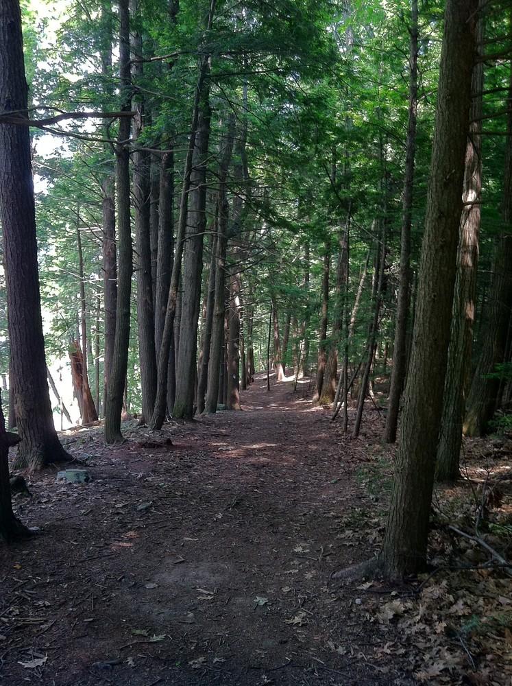 Trail (Credit: Katie Nemmer)