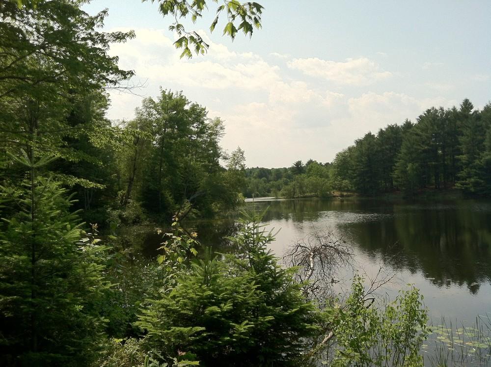 Kennebec River (Credit: Katie Nemmer)