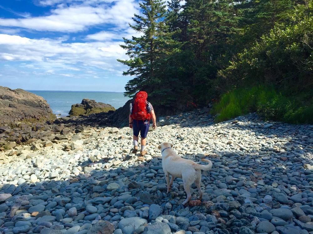 Stone beach (Credit: SH)