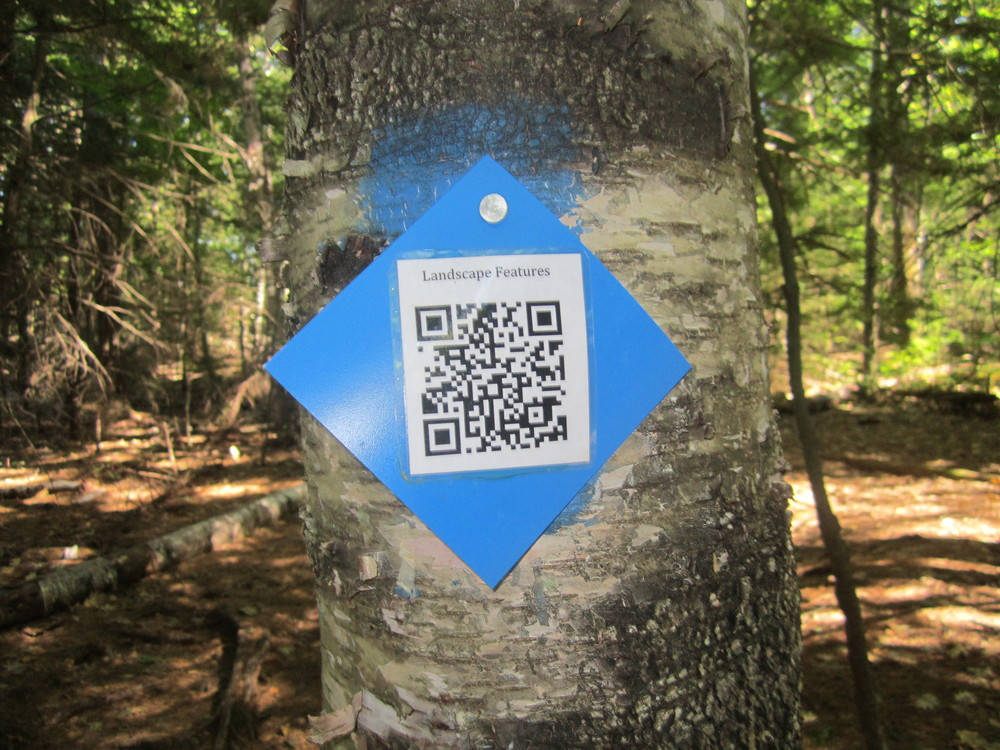 Never seen these ona hiking trail before but pretty cool. (Credit: Talkingtent)