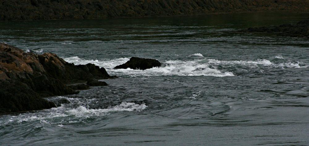 Whirlpools at Reversing Falls (Credit: L. L. Wall @ Panoramio)