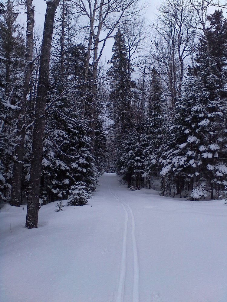 Side trail to Stair Falls (Credit: Maine Trail Finder)