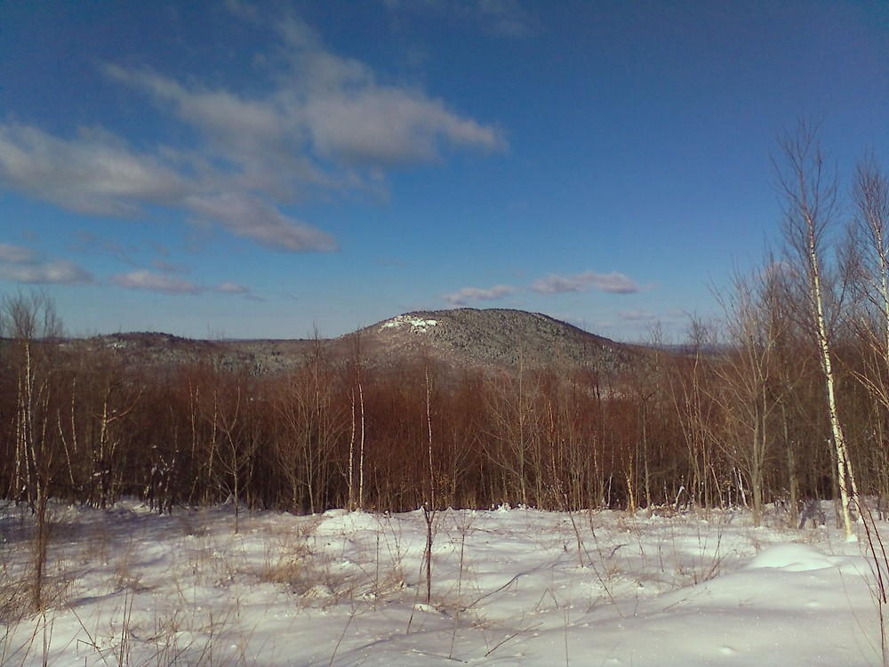 View west from the main trail (Credit: Maine Trail Finder)