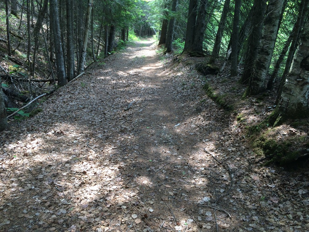 The Rangeley River Trail is wide with a prepared surfaced (Credit: Maine Trail Finder)