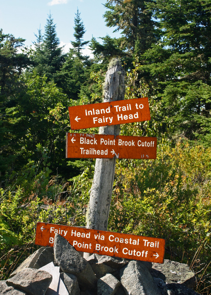 So Many Choices, So Little Time (Credit: L. L. Wall (Panoramio))