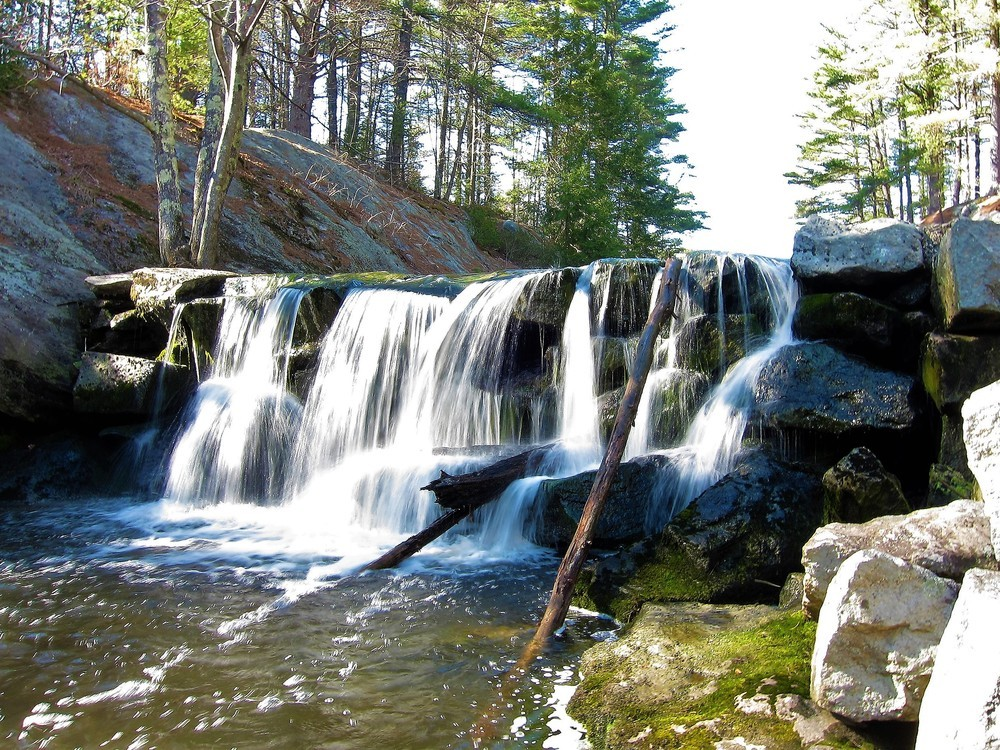 The Old Chandler Mill Dam is the beginning of Chandler Brook (Credit: RRCT)