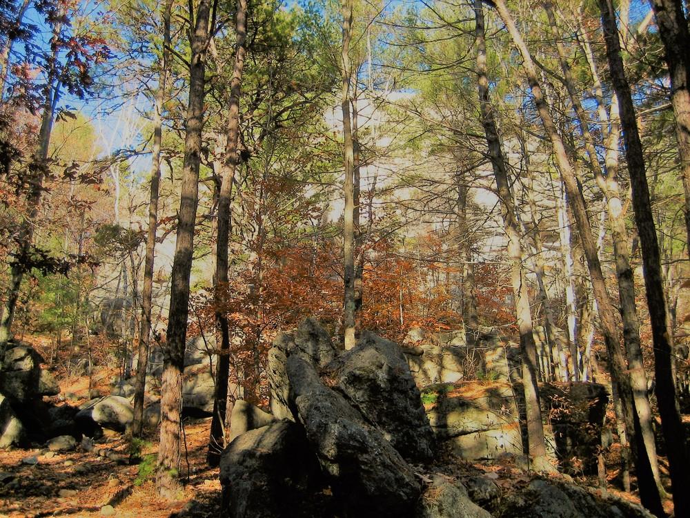 Large glacial erratics at the base of Jockey Cap Rock (Credit: Maine Trail Finder)