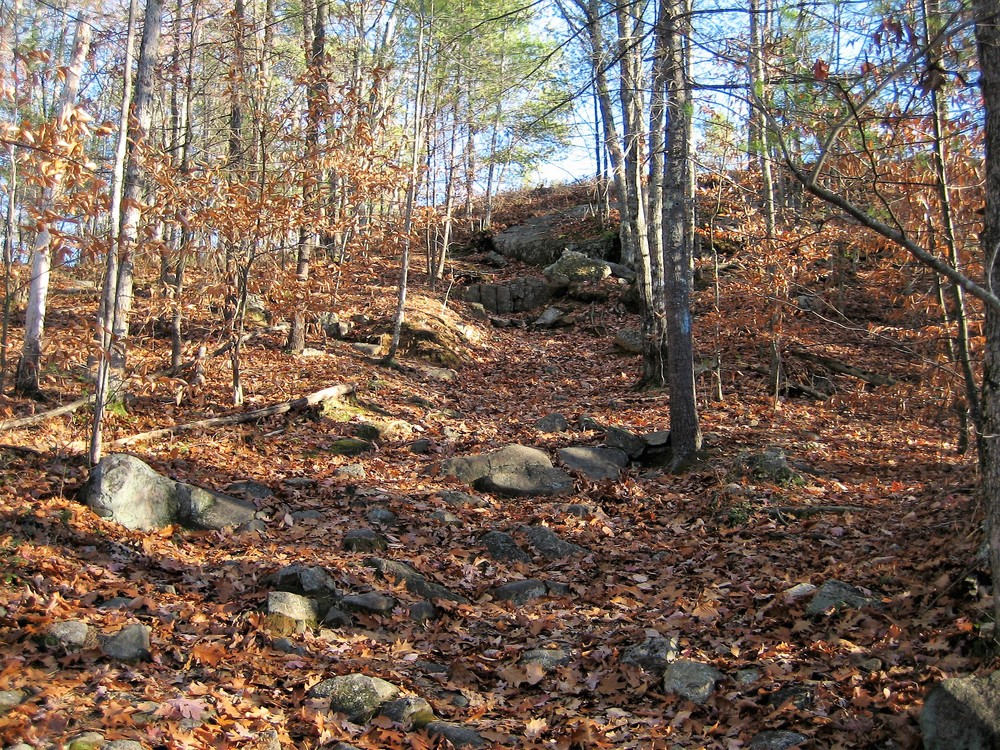 Steep final ascent to the top of Jockey Cap (Credit: Maine Trail Finder)