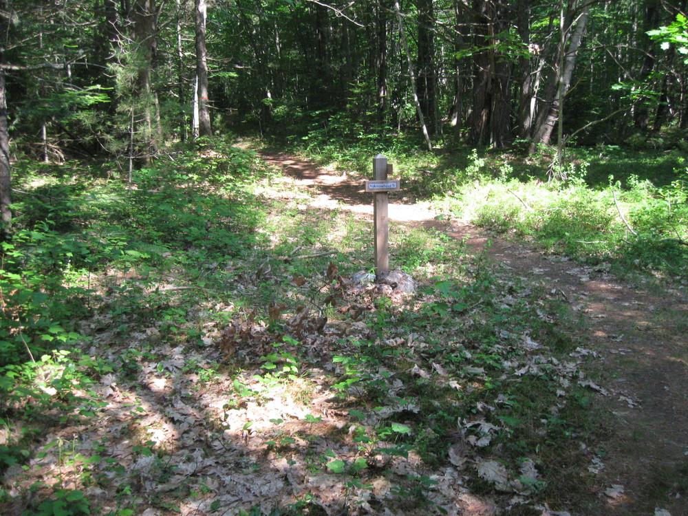 CSF North Trail (Credit: Elias Grant)