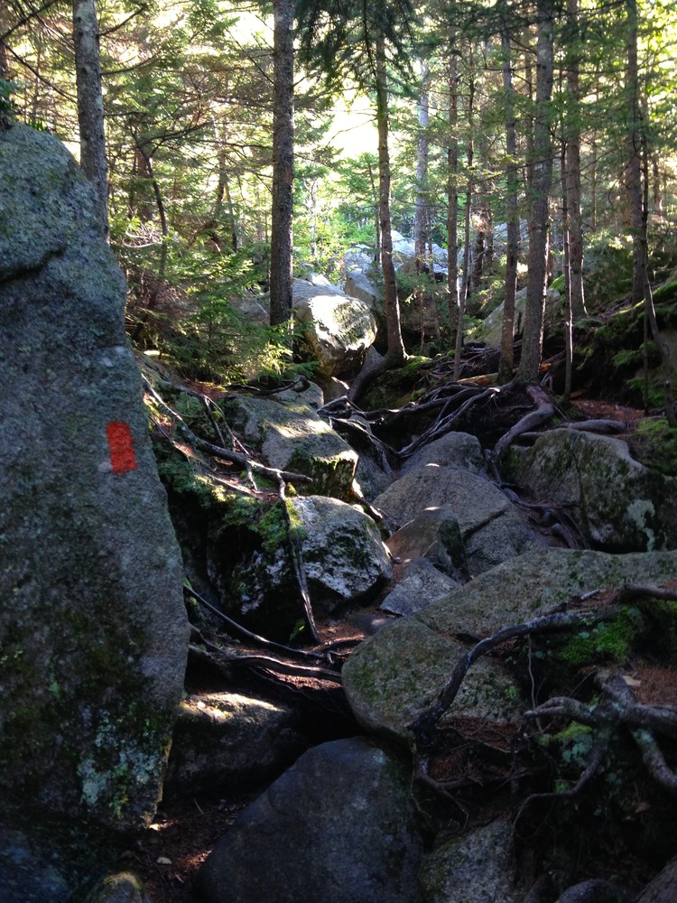 Trail to Table Rock
