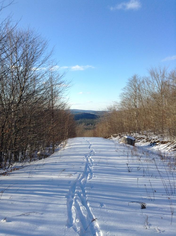 Skiing down the Mountain View Trail (Credit: Nicole Grohoski)