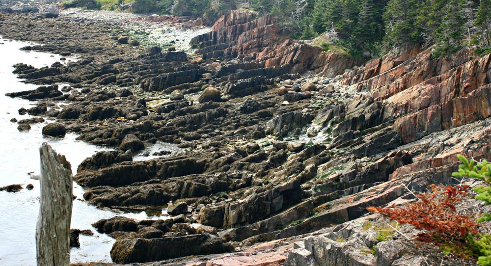 Low-Tide Ledges (Credit: L. L. Wall (Panoramio))