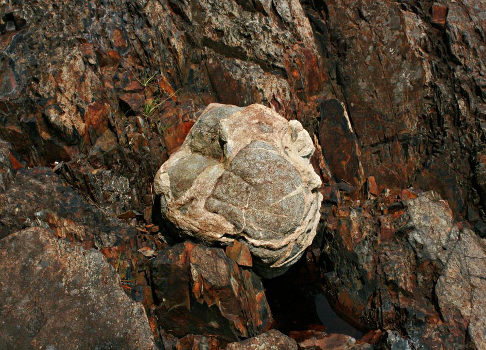 Erratic Boulder at Tide-Line (Credit: L. L. Wall (Panoramio))