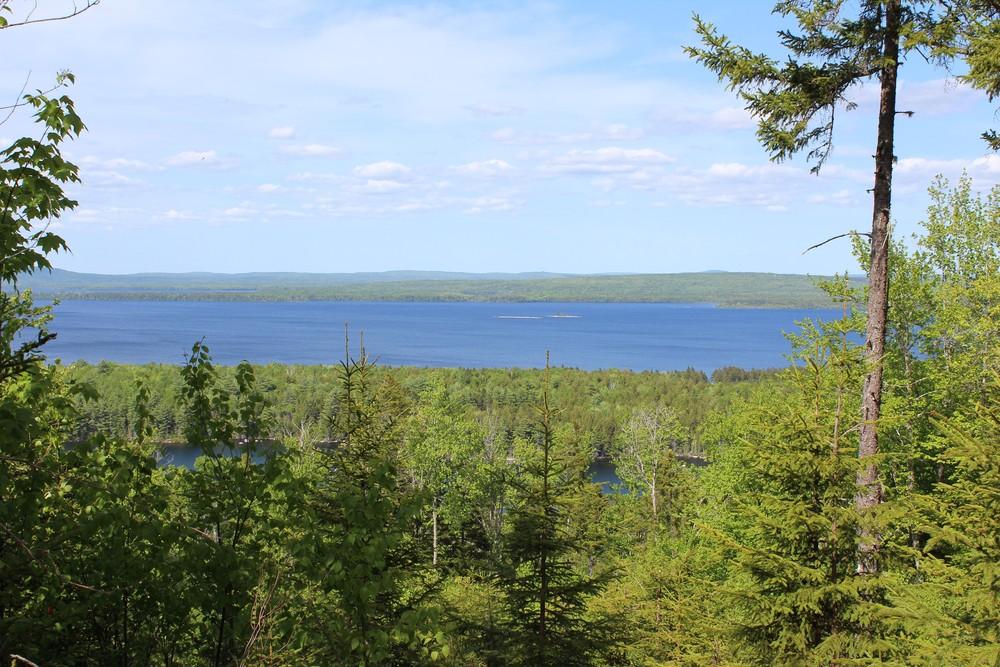 Views across East Grand Lake, Eastern Maine, and New Brunswick (Credit: Woodie Wheaton Land Trust)