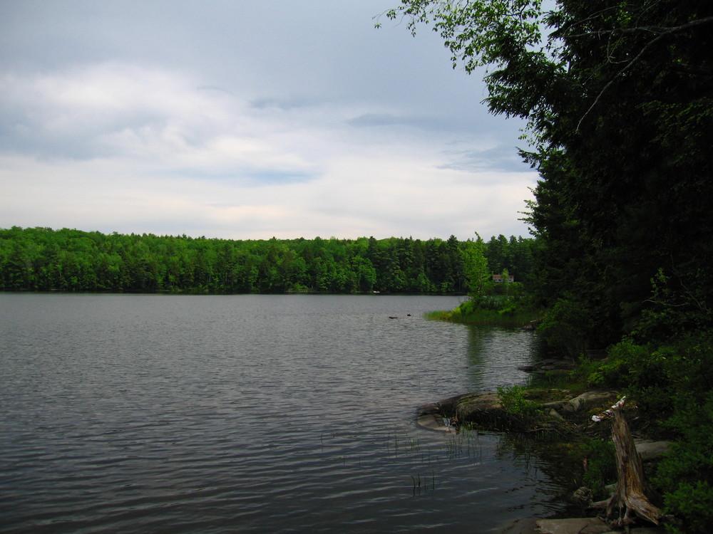 Jamies Pond (Credit: M. Morris)