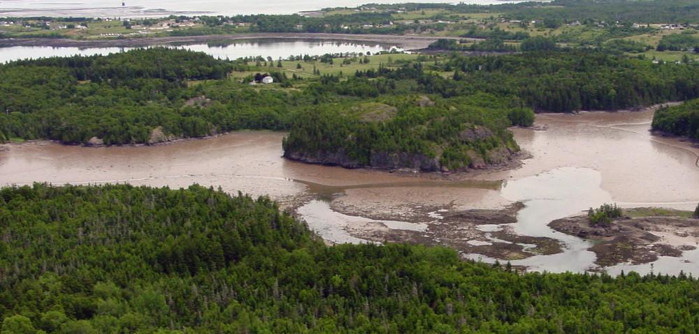 Low Tide (Credit: Downeast Coastal Conservancy)