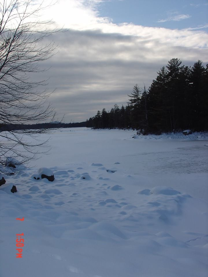 Loop at start of trails going by pond (Credit: Joyce Bradway)