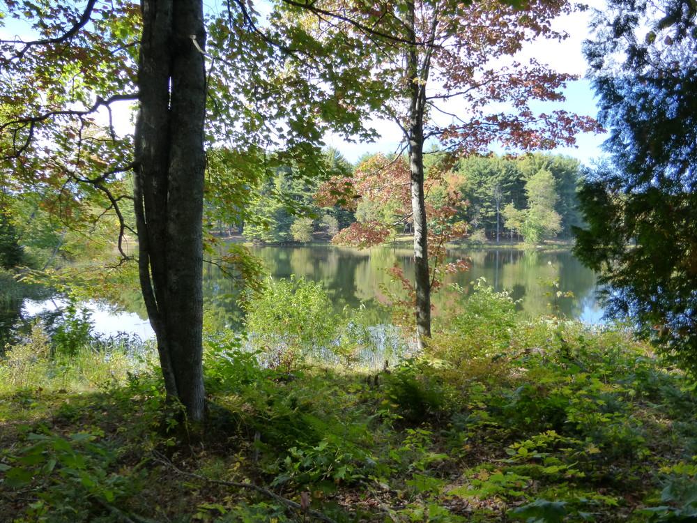 Messalonskee Stream trail. (Credit: Chris Nason)
