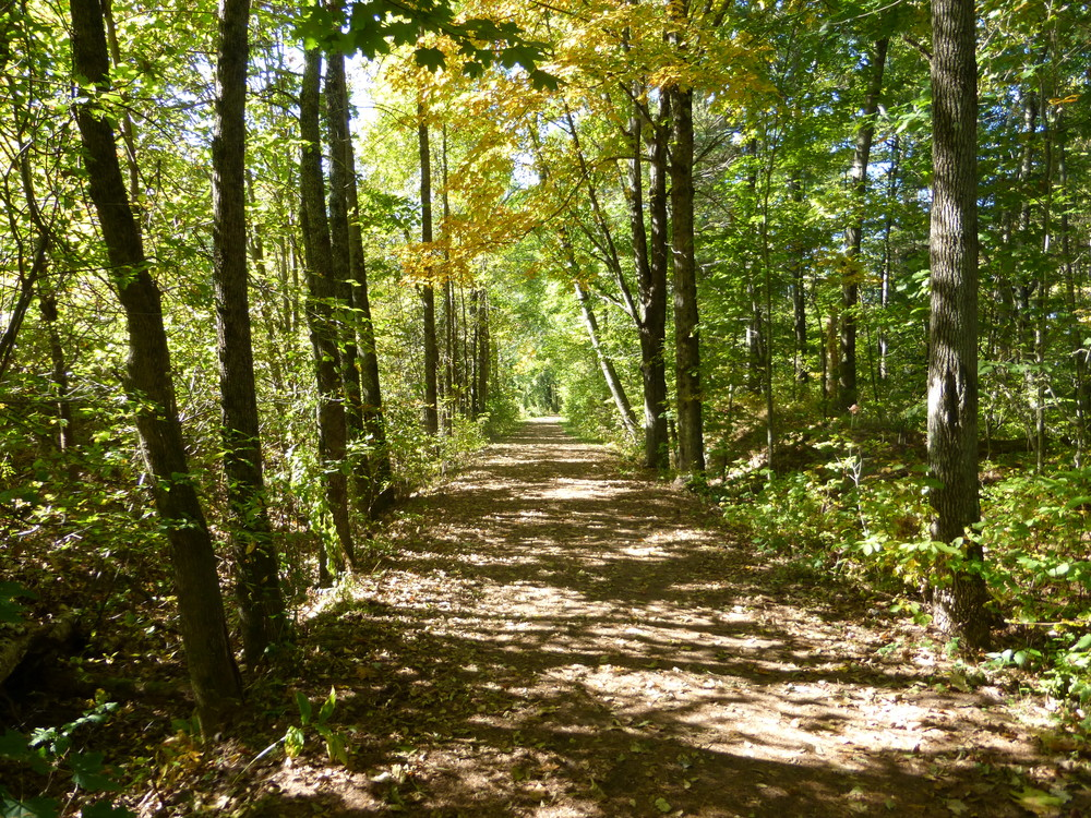 The trail is wide and flat. (Credit: Chris Nason)