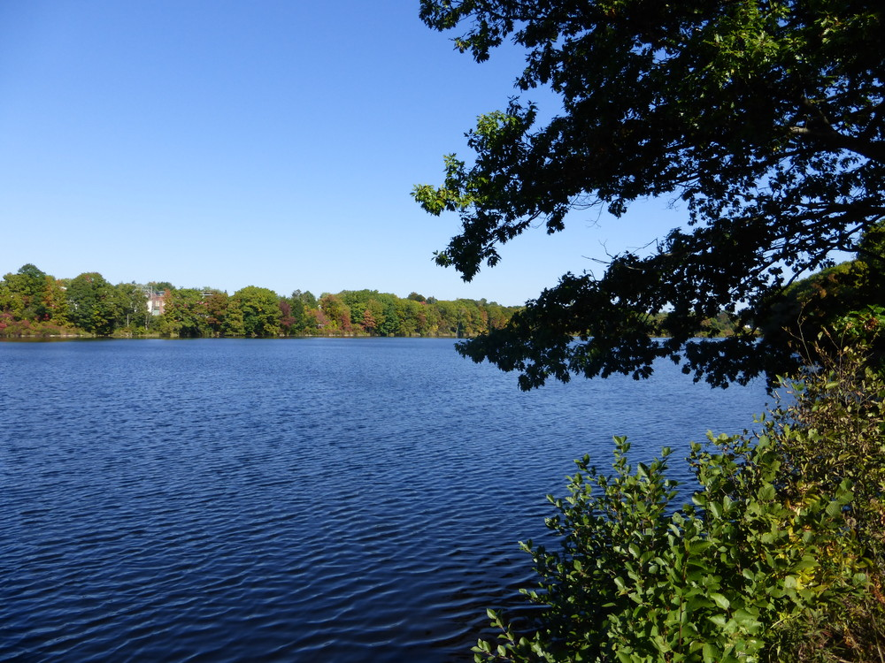 View of the Kennebec from the trail. (Credit: Chris Nason)