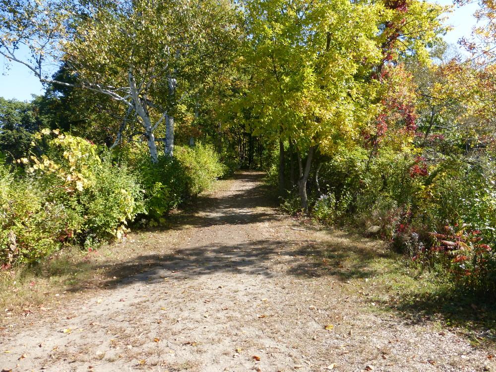 The trail. (Credit: Chris Nason)