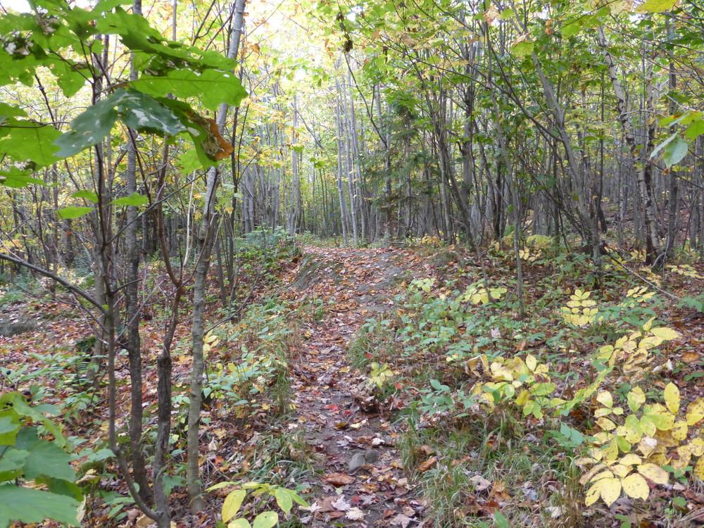 Spur Trail (Credit: Chris Nason)