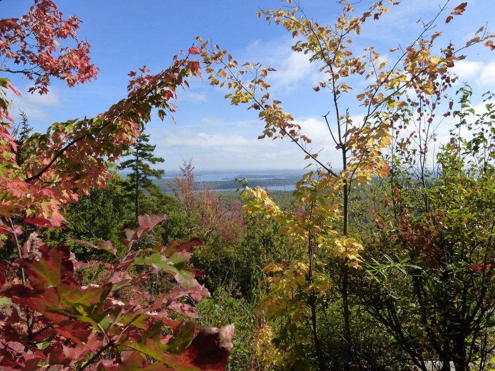 View of Belgrade Lakes from lookout. (Credit: Chris Nason)