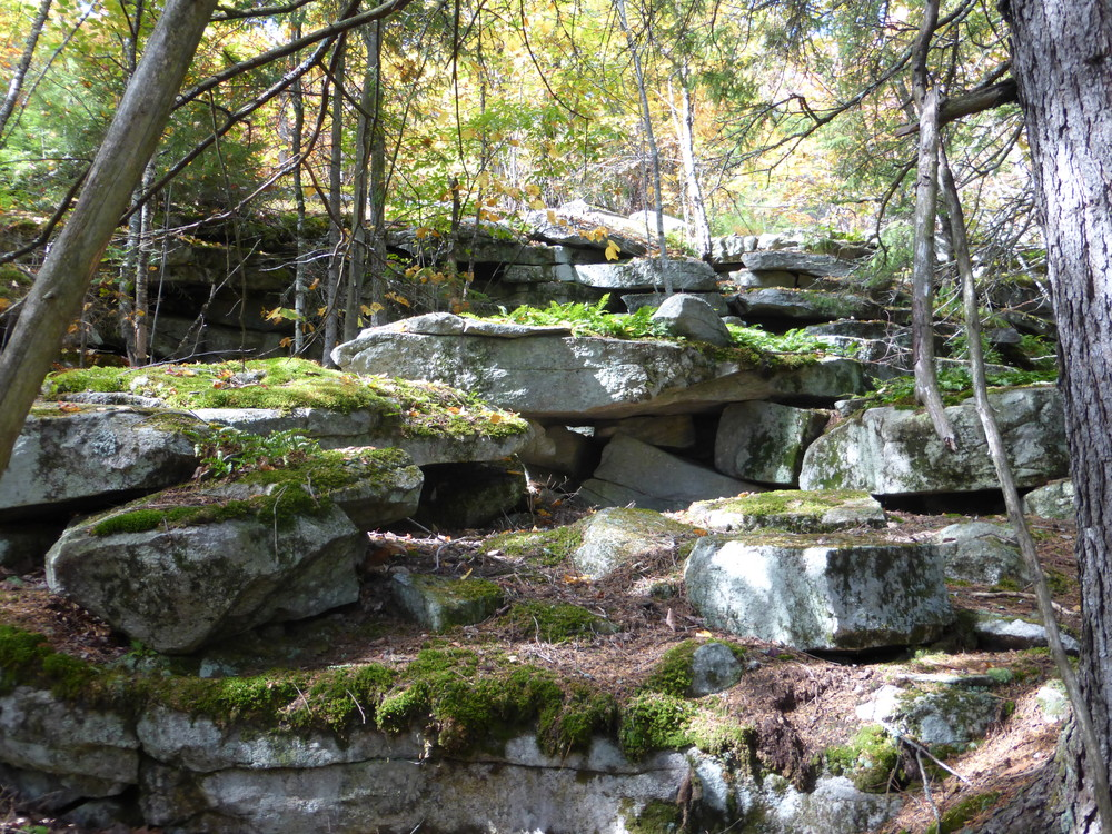 There are lots of awesome ledges and rocks along the trails. (Credit: Chris Nason)
