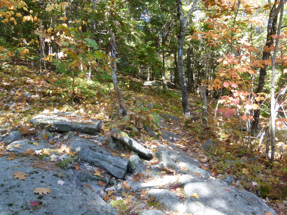 Rocky paths make for an interesting hike. (Credit: Chris Nason)