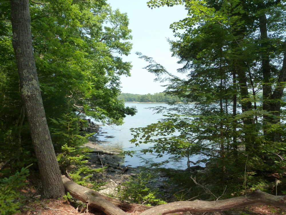 Cross River from OM East trail. (Credit: Chris Nason)