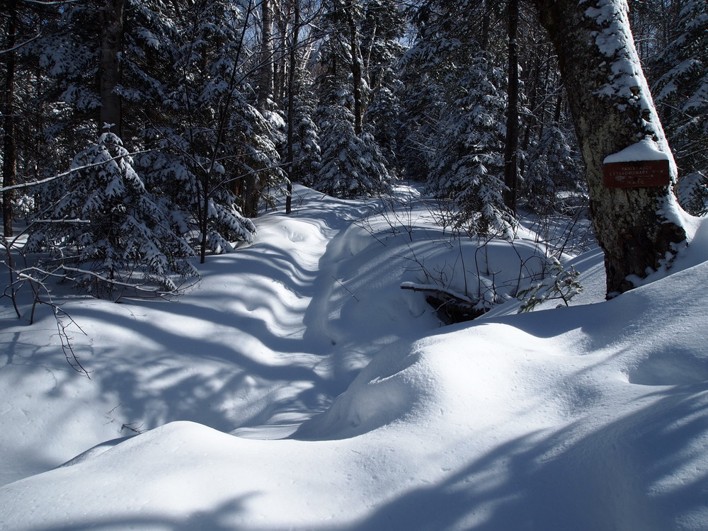 Snowshoeing to Baldpate West Peak March 2015