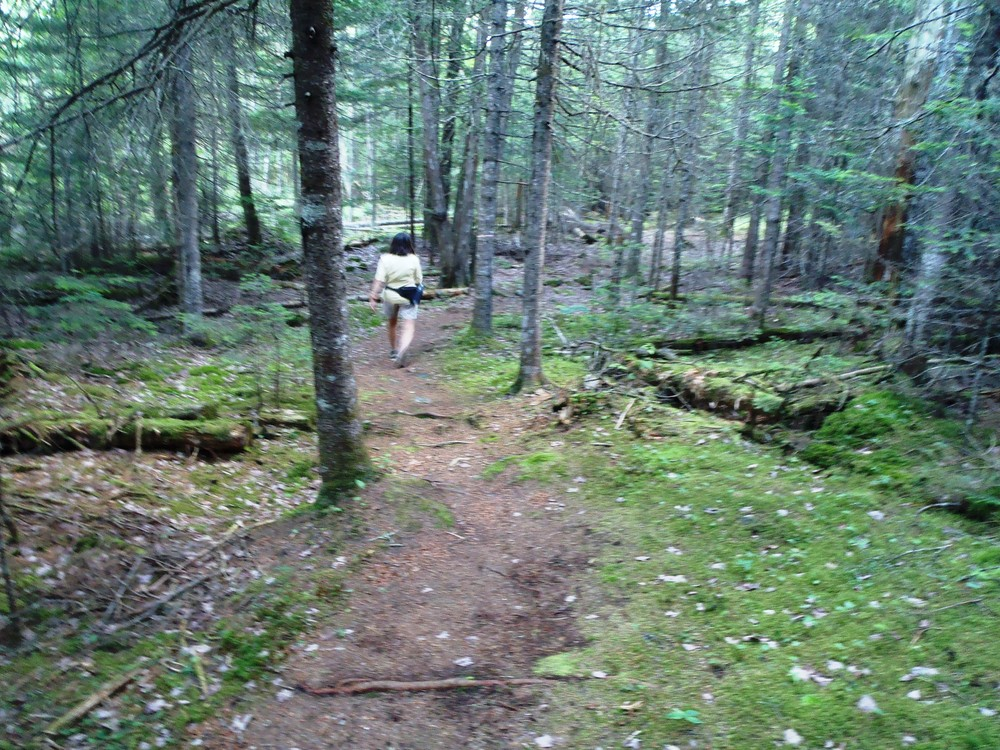 Outer Loop Trail (Credit: Joanne Alex)