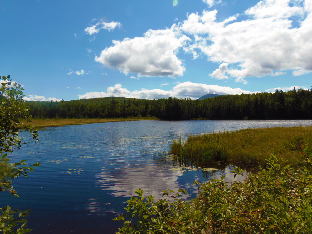 Stratton Brook Pond at trail start (Credit: Robert Ratford)