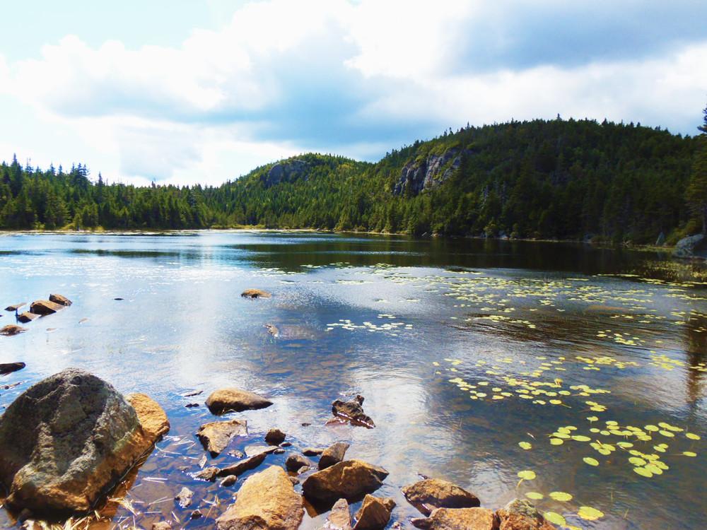 The Horn's Pond (Credit: Robert Ratford)