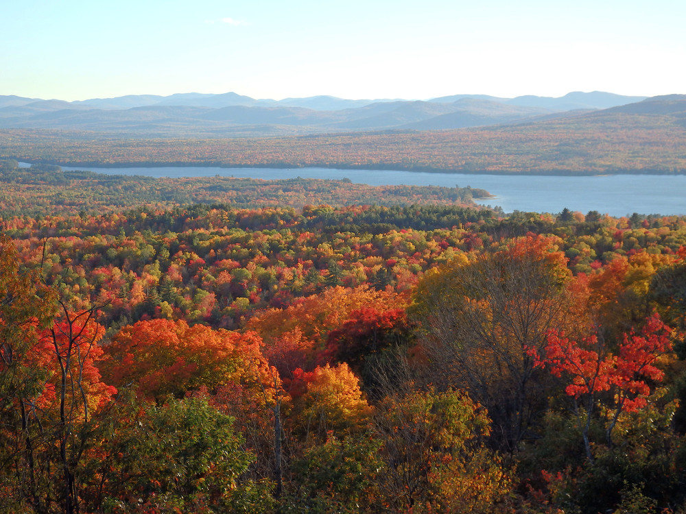 Webb Lake viewed from the Ledges Trail @ Mt. Blue's Center Hill (Credit: Robert Ratford)