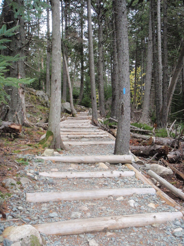 Flying Mountain Trail (Credit: National Park Service)