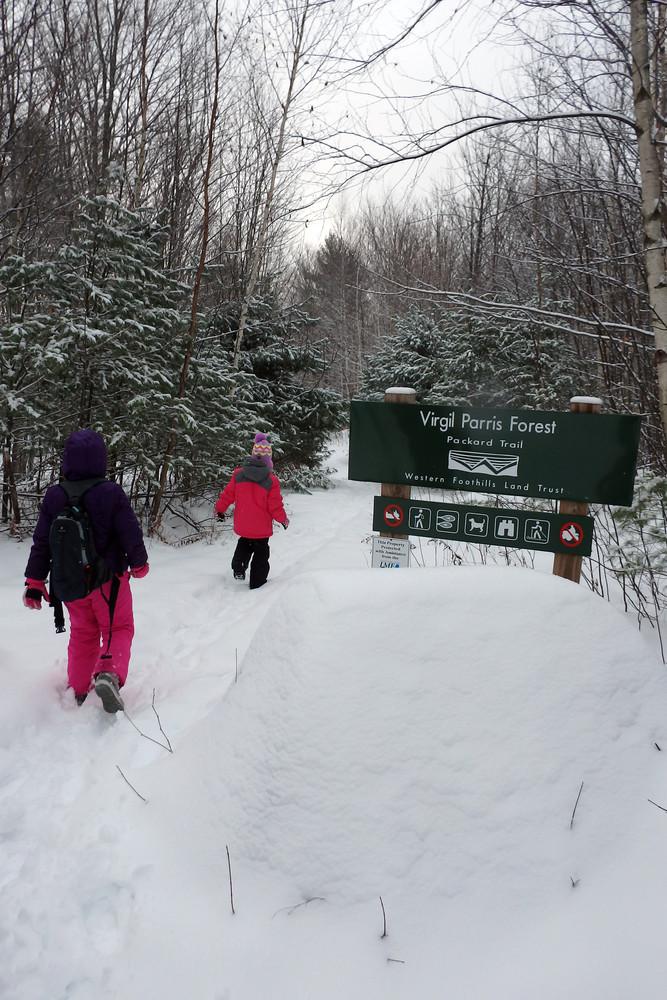 Bringing the kids for a winter hike. (Credit: Robert Ratford)
