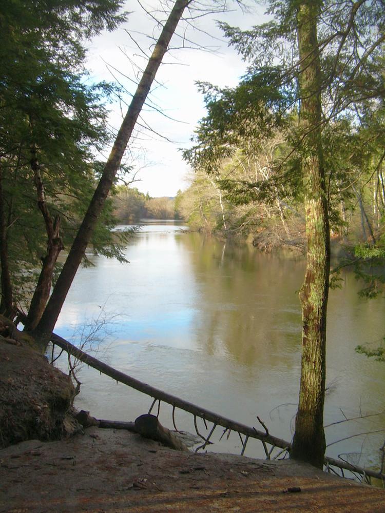 Presumpscot River Preserve (Credit: Portland Trails)
